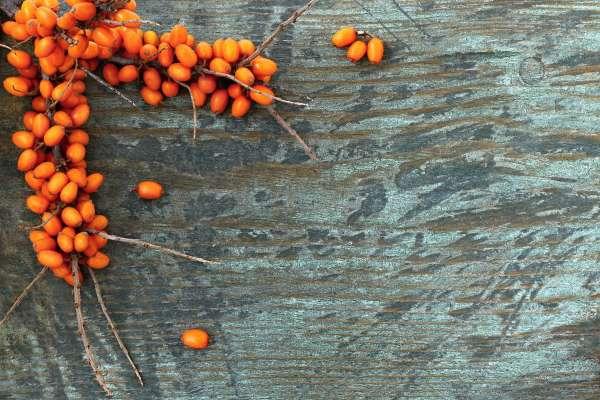 ekohoitola, kauneushoitola, kasvohoito, sokerointi